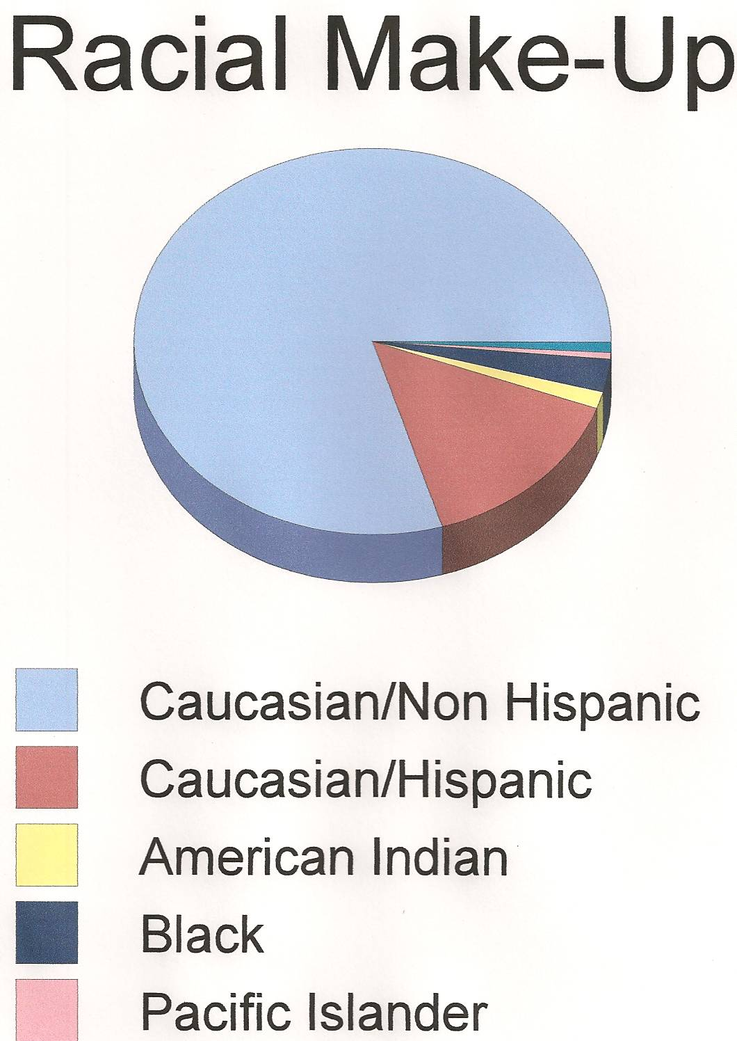 Racial Make-Up Pie Chart